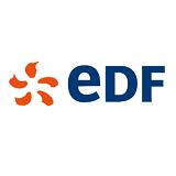 Gilles Deleuze, EDF